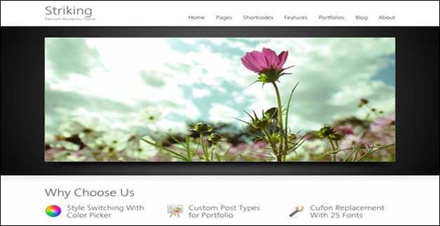 60 Best WordPress Themes Showcase